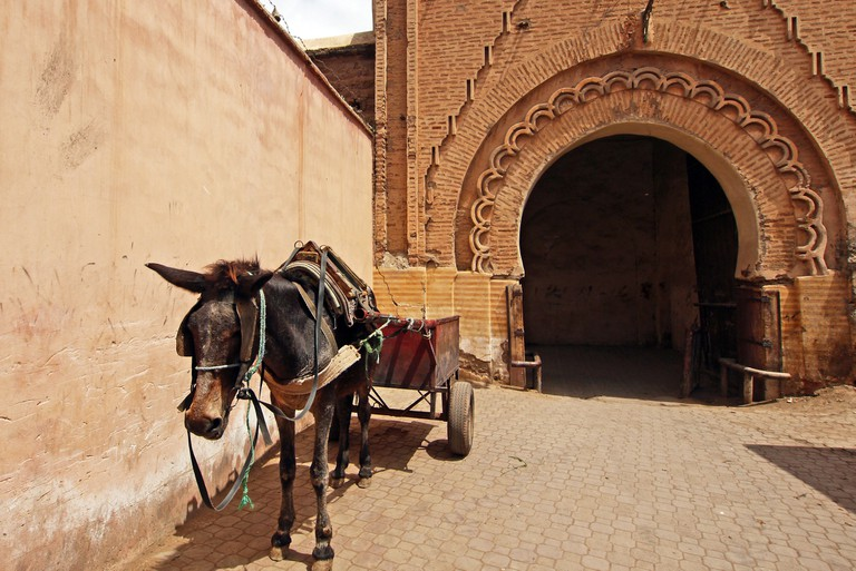 Marrakesh town gate Bab Debbagh