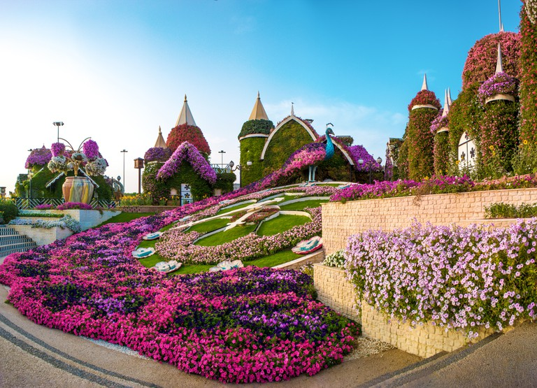 Dubai, Miracle Garden - The Village of Flowers