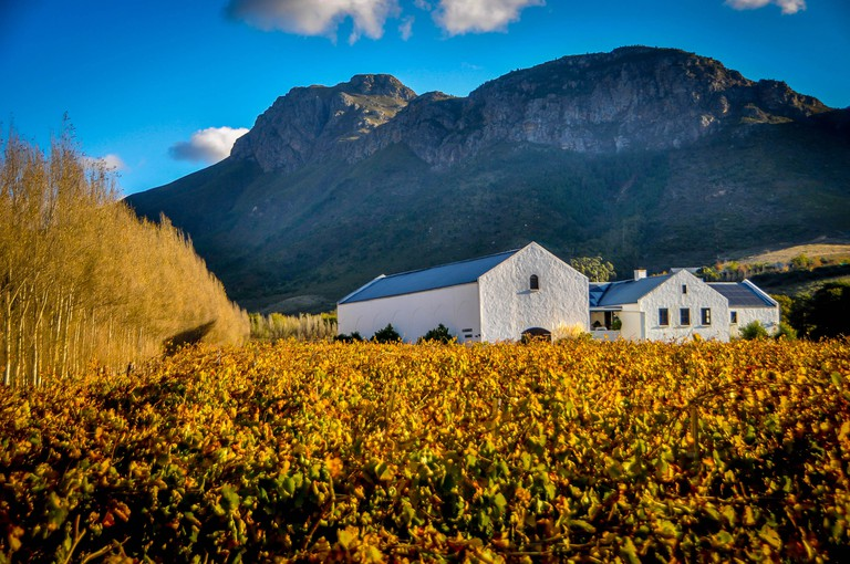 A wine farm in the town of Fransschoek, Cape Town