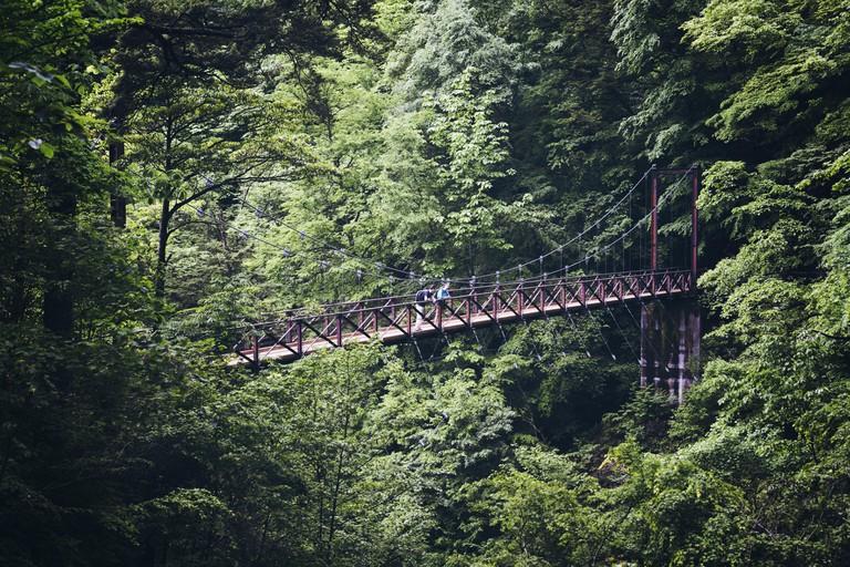 Couple standing on the bridge in Okutama Forest, Tokyo