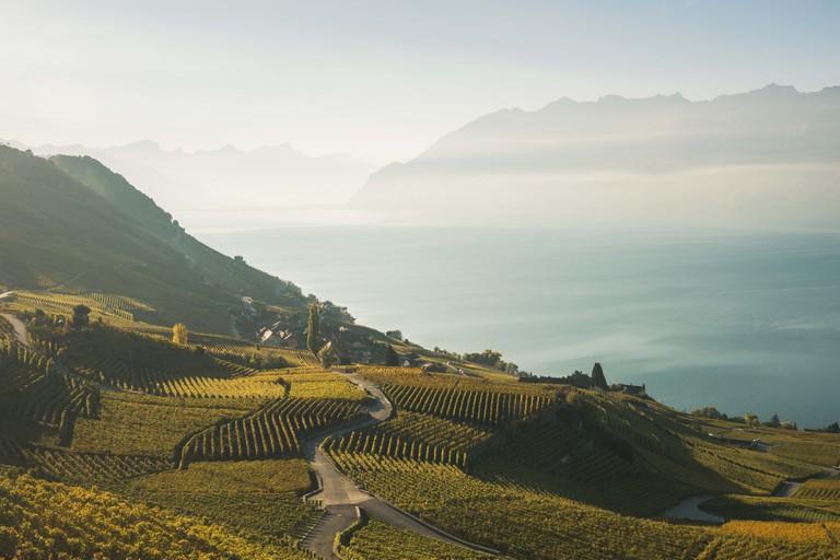 The Lavaux, Switzerland