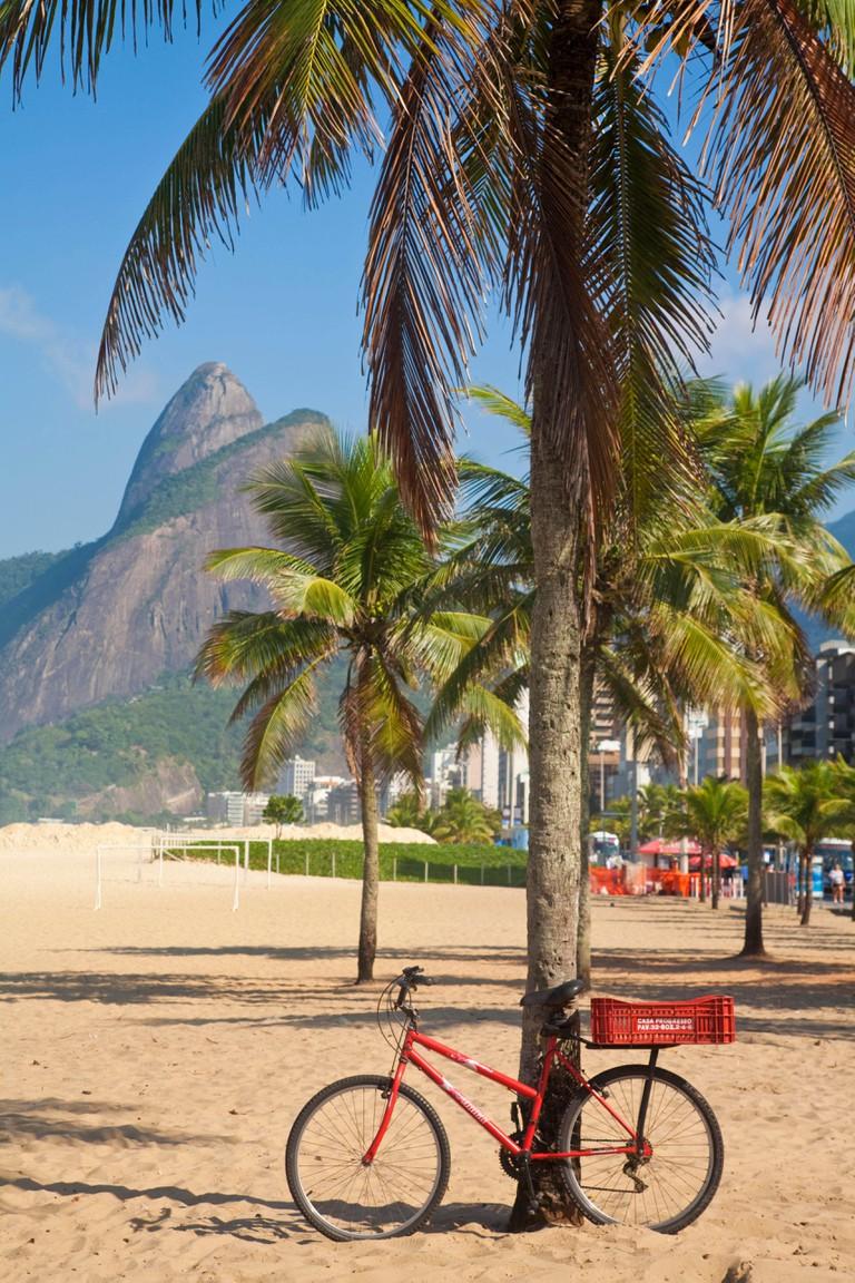 Brazil, Rio De Janeiro, Leblon beach, Bike leaning on palm tree