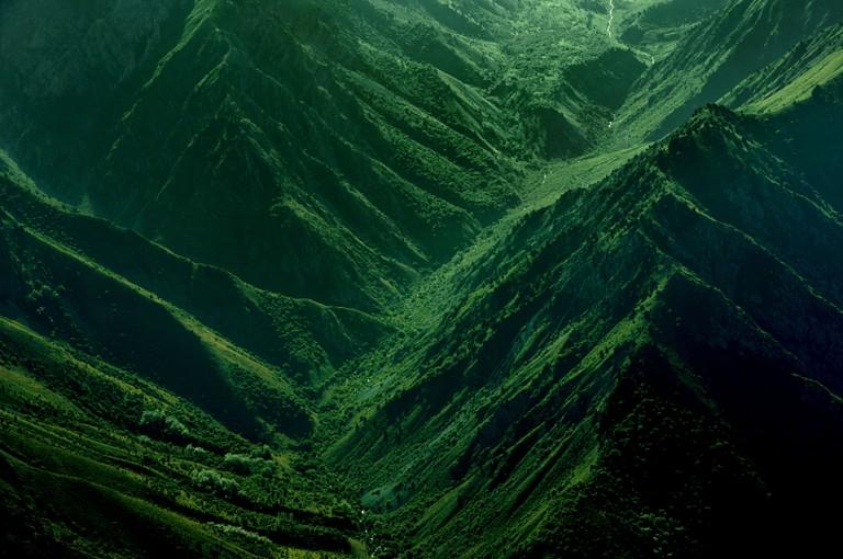 Chatkal Mountain Forest Reserve, Tashkent region