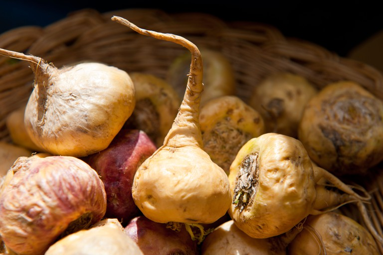 Maca, a root vegetable from Peru