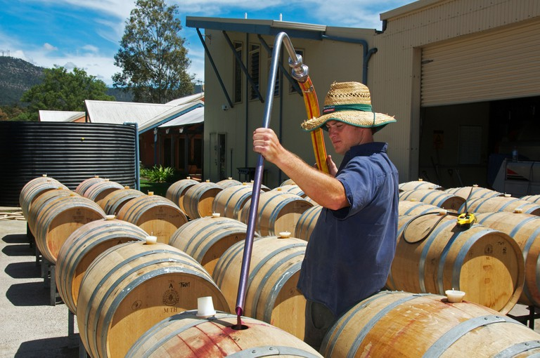 Pouring red wine into barrel Hunter Valley