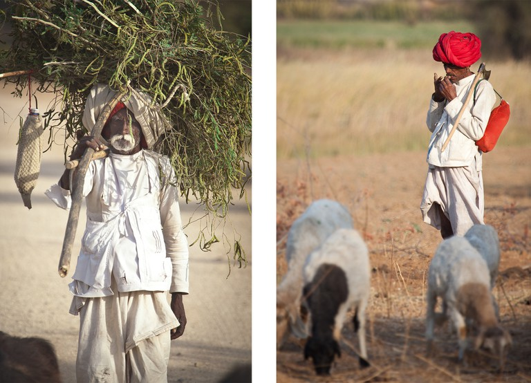 Left: Collecting fodder for the camels / Right: Raika shepherd pauses for a smoke before bedding down for the night