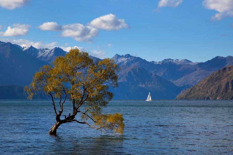 Sailing boats on Lake Wanaka