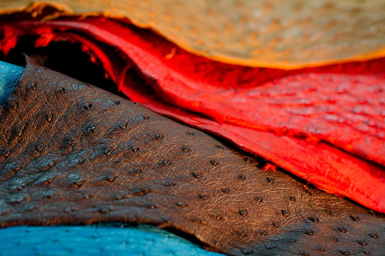 Dyed ostrich leather