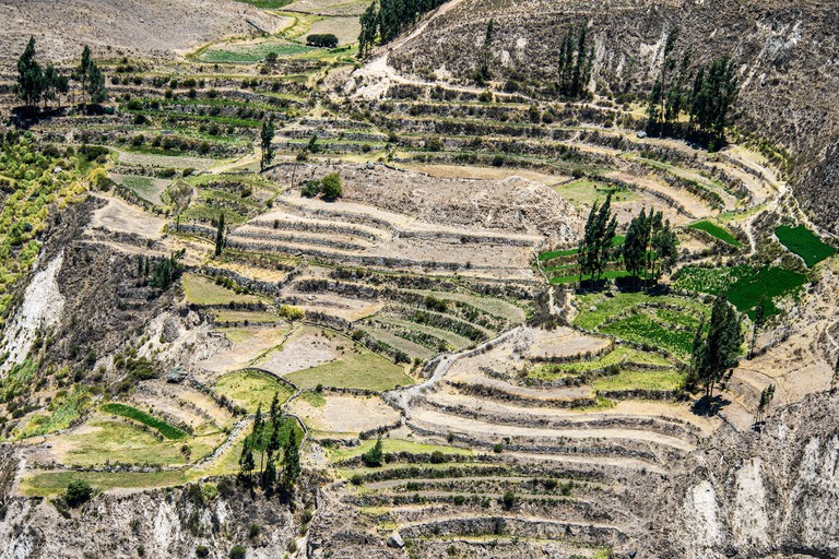 Canyon of the Colca River in southern Peru. Peru's third most-visited tourist destination with about 160,000 visitors annually,