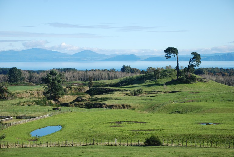 Surroundings of Lake Taupo, North New Zealand