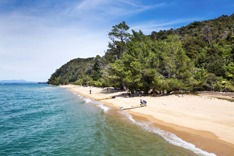 White sandy beach and clear turquoise water in Abel Tasman National Park, South Island, New Zealand