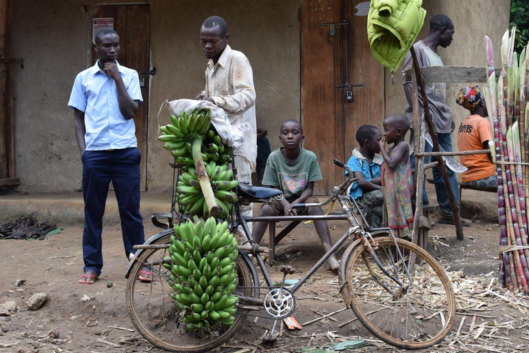 Matoke sellers on a bike