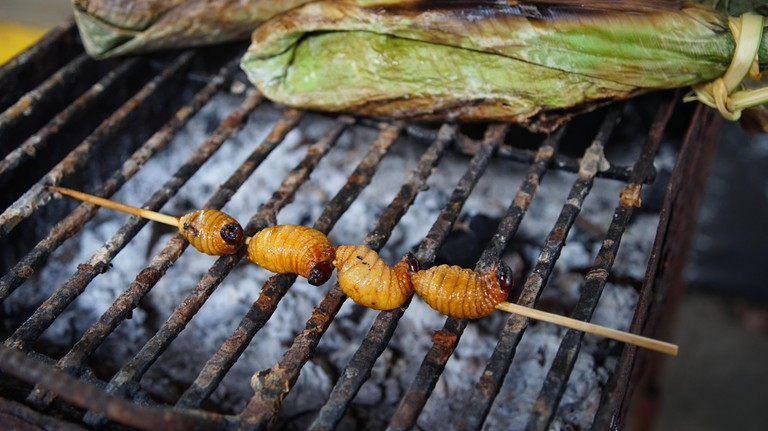 Roasted worms called Chontacuros
