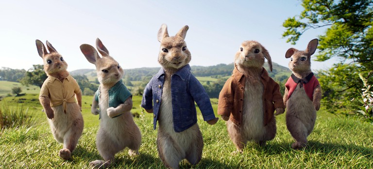 Pierre LapinPeter Rabbit2018Real Will Gluck.Collection Christophel © Sony pictures / Animal Logic Entertainment / Columbia pictures