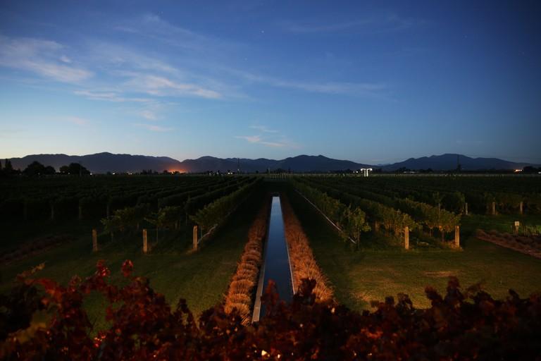 Sunrise from Marlborough Winery