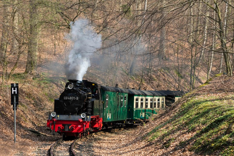 Narrow-gauge railway Rasender Roland drives steaming through deciduous forest in spring, island of Rugen, Mecklenburg-Western Pomerania, Germany. Image shot 2019. Exact date unknown.