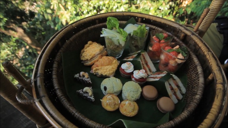 Treepod Dining 2