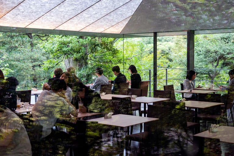 People are Having Coffee in a Cafe in the Forest