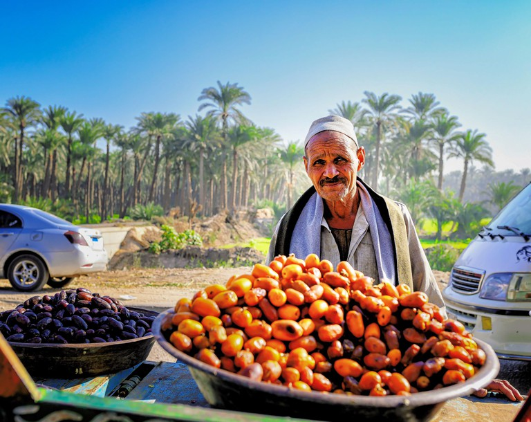 Street vendor selling freshly harvested dates by the roadside in Dahshur