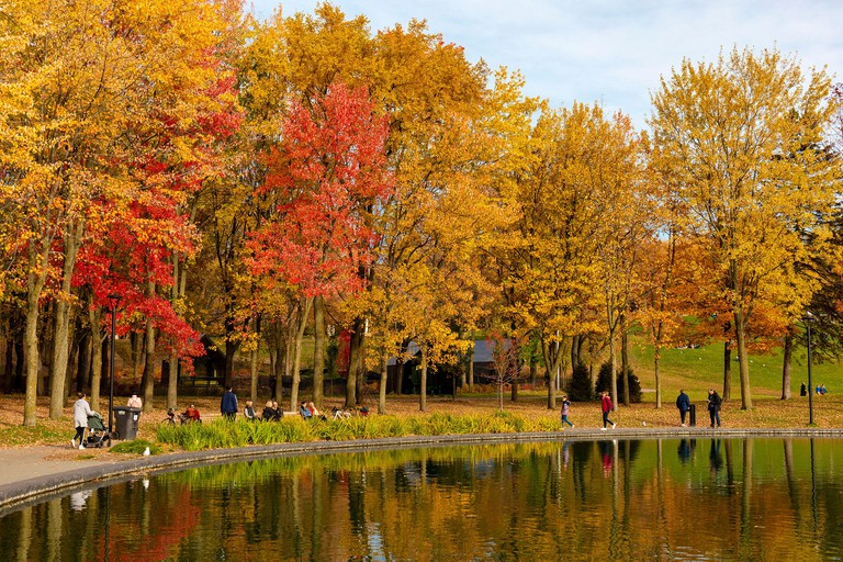 Canada, Province of Quebec, Montreal, Mount Royal Park, Beaver Lake in the colors of Indian Summer