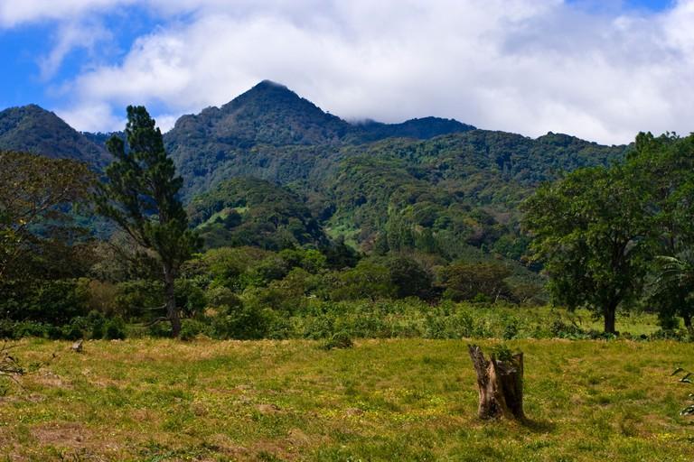 Peaks in Parque Nacional Volcan Baru National Park near Boquete Northern Panama
