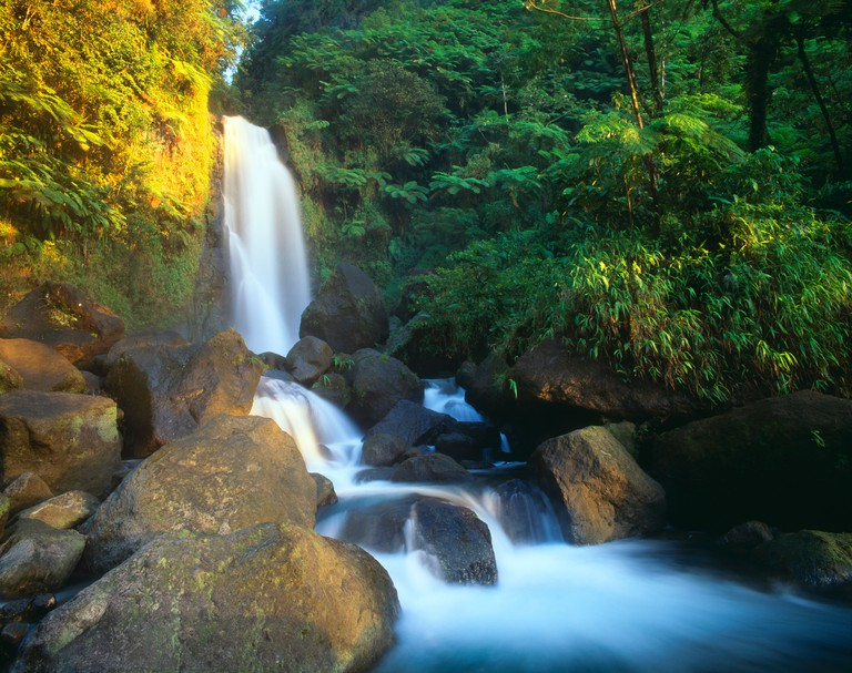 Trafalgar Falls 120 feet high Tropical rainforest Dominica Windward Islands Lesser Antilles Caribbean
