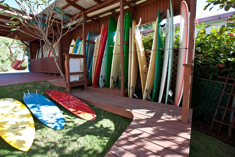 Surfboards at a Surf Shop