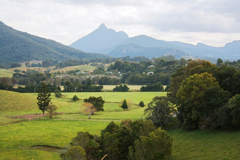Australia, New South Wales, Mount Warning National Park, mountain and lush countryside