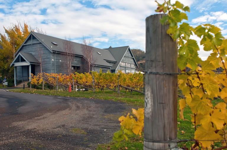 Meadowbank Vineyard, Coal River Valley