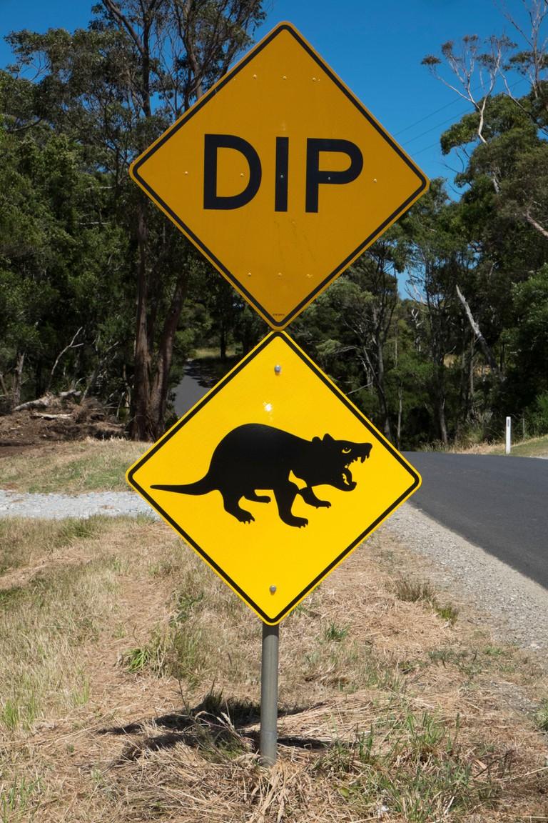 Tasmanian devil road signs near Marrawah, Arthur River, Tasmania