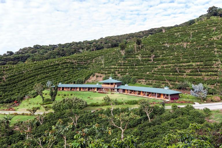 Hotel Finca Lerida Coffee Plantation and Boutique Hotel. Boquete