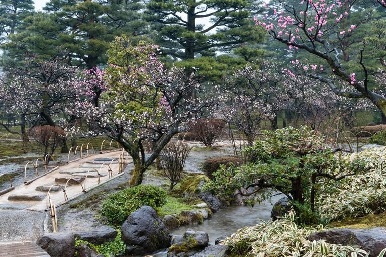 The garden of Kenroku-en, Kanazawa, Honshu, Japan.