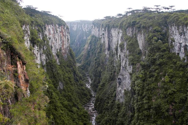 Brazil, Rio Grande do Sul, Parque Nacional de Aparados da Serra, Itaimbezinho Canyon, view of narrow gorge with stream at bottom