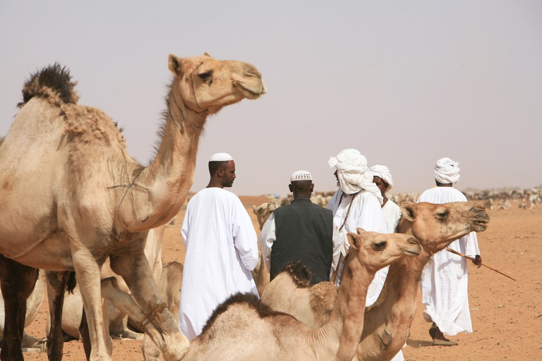 Traders, customers and animals at the traditional Camel Market in the outskirts of Omdurman, Khartoum, Sudan