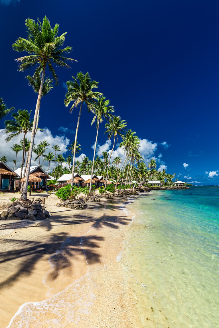Tropical beach with with coconut palm trees and villas on Upolu, Samoa Islands