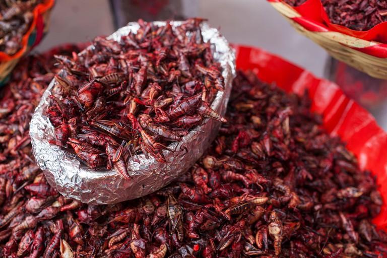 Chapulines or Grasshoppers at Mercado Benito Juarez, Oaxaca City, Oaxaca, Mexico,