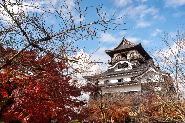 INUYAMA, JAPAN - NOV 24, 2016 - Red leaves at Inuyama Castle, Aichi Prefecture, Japan. Inuyama is one of only twelve original castles in Japan.