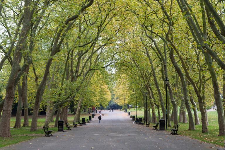 The main walkway of Crystal Palace Park,  London.
