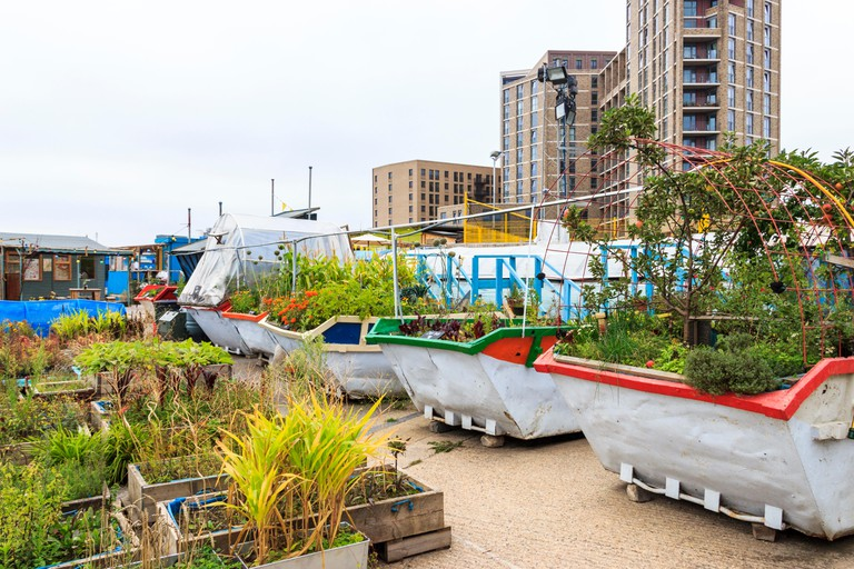 The Skip Garden, a community garden providing a green oasis in the middle of the King?s Cross development, London, UK, 2013