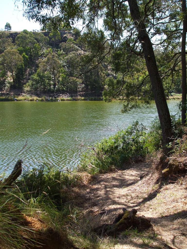 Budj Bim - Mt Eccles National Park, Victoria, Australia 31