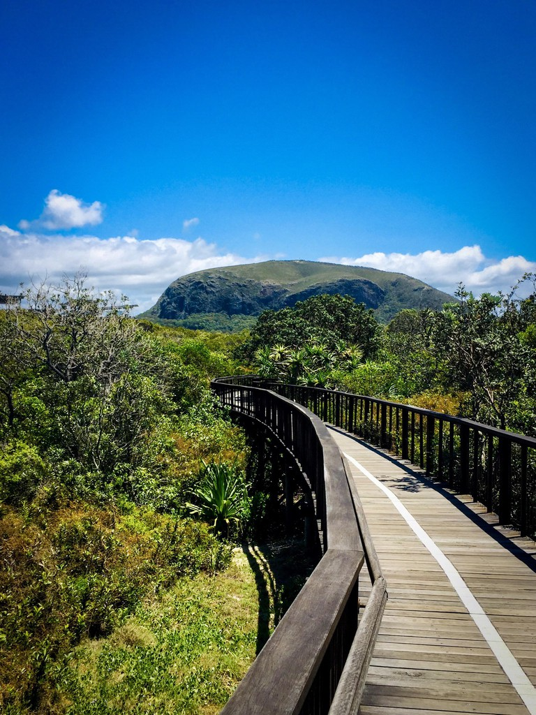 View of Mount Coolum from the boardwalk