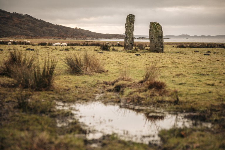 Group of Scottish Standing Stones in a Sheep Field