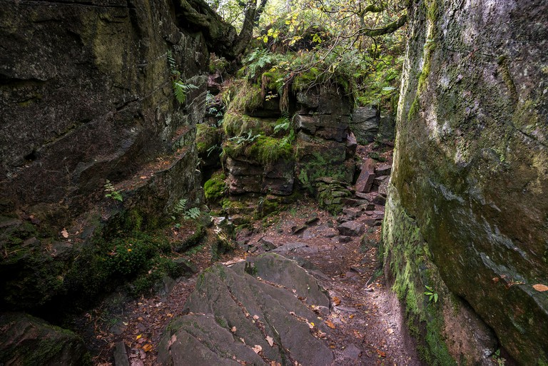 Luds Church, Gradbach, Staffordshire, England. A mysterious rocky chasm in woodland near the Roaches.