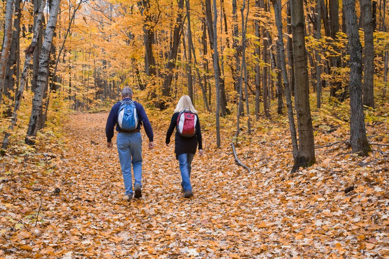 Couple hiking in fall in the Ganaraska Forest on the Oak Ridges Moraine Greenbelt area of Ontario Canada. Image shot 10/2008. Exact date unknown.