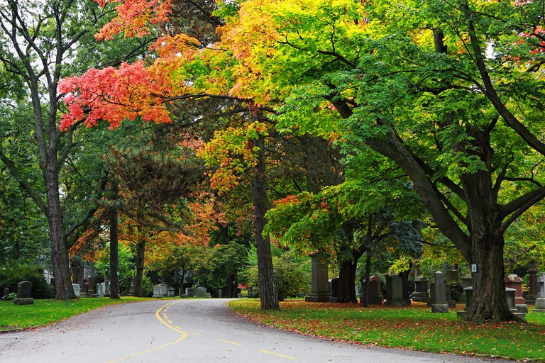 Discovery Walks along Beltline in Mount Pleasant Cemetery in Toronto