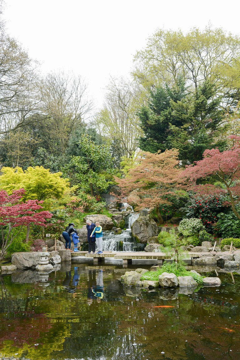 The Kyoto Japanese Garden in Holland Park, Holland Park Avenue, Kensington, London, W11, UK