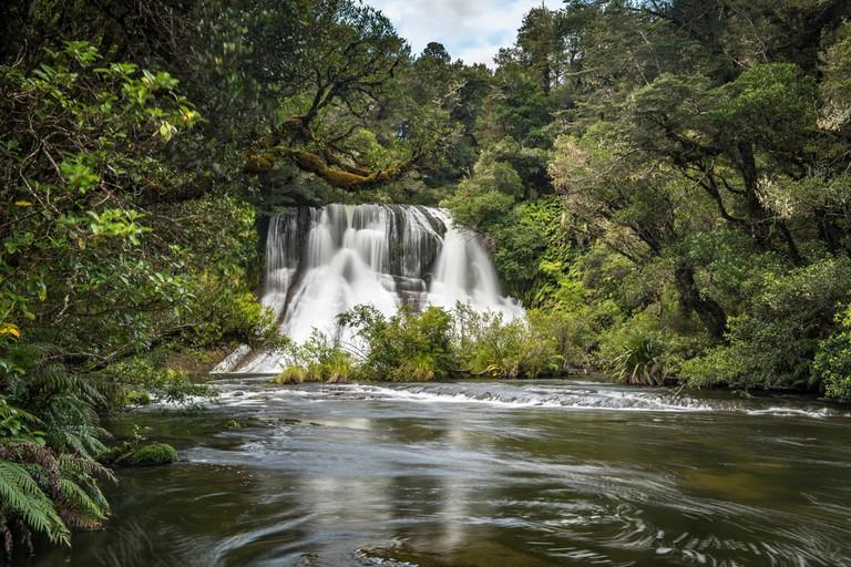 Aniwaniwa Falls, Te Urewera forest
