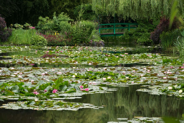 Monet's water garden at Giverny