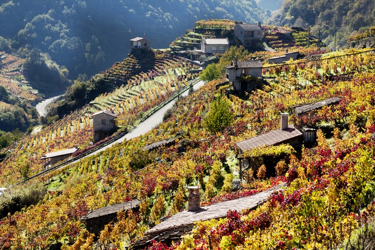 Ribeira sacra vineyards and small cellars in autumn, Galicia, Spain.