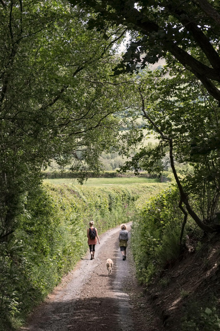 A mother and daughter (and their dog) keeping apart while walking along a quiet country lane, Shropshire, UK